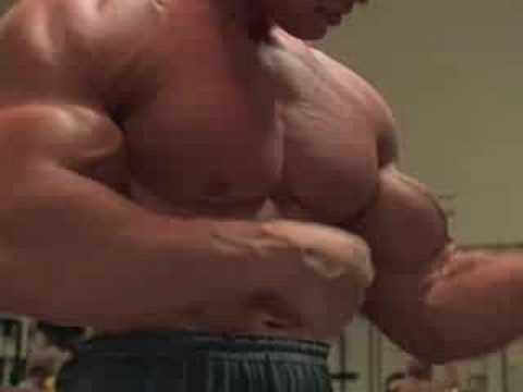 arnold schwarzenegger bodybuilding back. Body Building - arnold