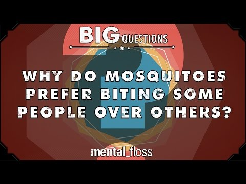 Why do mosquitoes prefer biting some people to