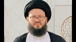 د/ السيد حمد الحسيني - أمين عام المجلس الإسلامي العربي