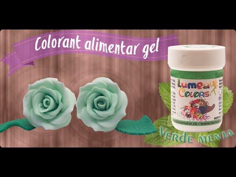 Colorant Alimentar gel Lumea Basmelor verde menta