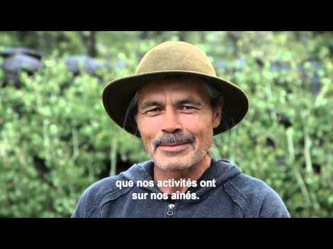 La sagesse des aînés du Yukon