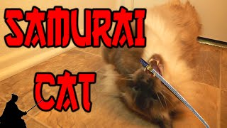 Nonton Samurai Cat Film Subtitle Indonesia Streaming Movie Download