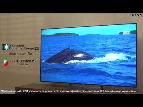 Telewizor SONY KD-55XE9005