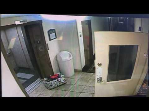 這位旅館經理發現小狗狗遭到電梯吊起立馬衝前救援,就算被抓傷他也拼了命要救牠!