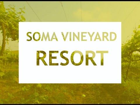 Soma Vine Village | Soma Vineyard Resort | Nashik.