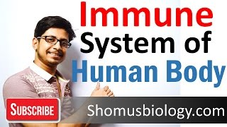 Innate and adaptive immunity | immune system of human body lecture