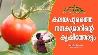 Video കലയപുരത്തെ   നന്ദകുമാറിന്റെ   കൃഷിത്തോട്ടം | Haritham Sundaram EP 182 MP3, 3GP, MP4, WEBM, AVI, FLV Juli 2018