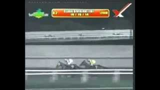 RACE 2 TANG'S DYNASTY 10/15/2014