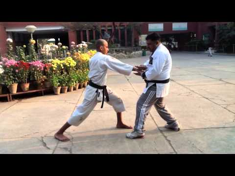 Karate -  Applying Karate Moves In A Street Fight
