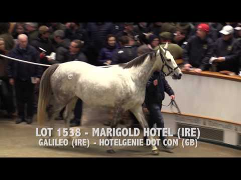Tattersalls December Mare Sale Day 1 2016