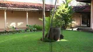 Hibiscus Beach Hotel & Villas 3*, Калутара