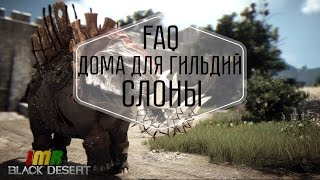 Black Desert - FAQ: Слоны и дома для гильдий. IMRastafari