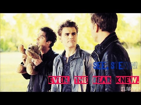 "The Vampire Diaries Season 6 humor || ""Even the bear knew."""