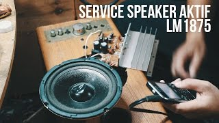 Service Speaker Aktif + Ganti IC LM1875 ke TDA2030