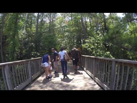 Virginia Aquarium Nature Trail (видео)