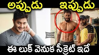 Video Hero Prince Work Out in Gym | Hero Prince New Look For his Next Movie | SIX PACK | Telugu Panda MP3, 3GP, MP4, WEBM, AVI, FLV Agustus 2018