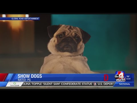 Show Dogs DVD Tuesday