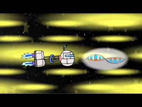 An Animation Explaining How Time and Space Behave for Different Things in the
