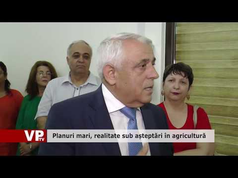 Planuri mari, realitate sub așteptări în agricultură