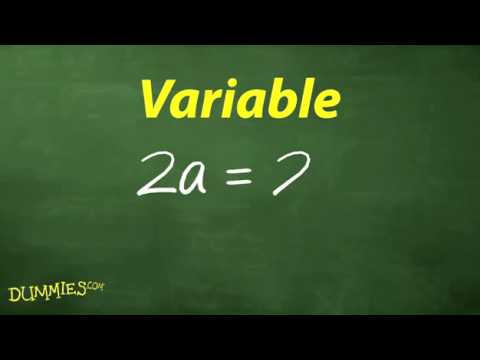 Understanding the Vocabulary of Algebra For Dummies