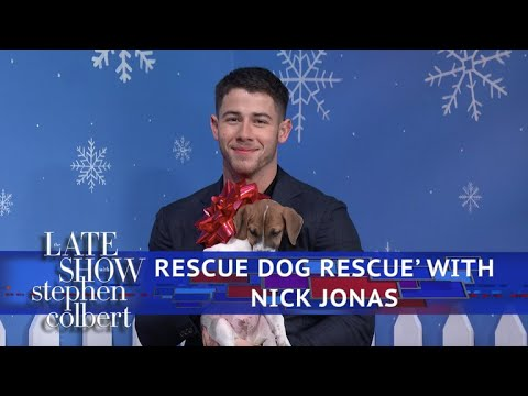 The Late Show Rescue Dog Rescue With Nick Jonas