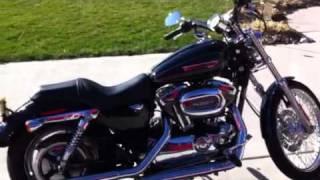 7. 2009 Harley Davidson Sportster 1200 Custom