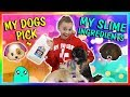 Download Lagu MY DOGS PICK MY SLIME INGREDIENTS   We Are The Davises Mp3 Free