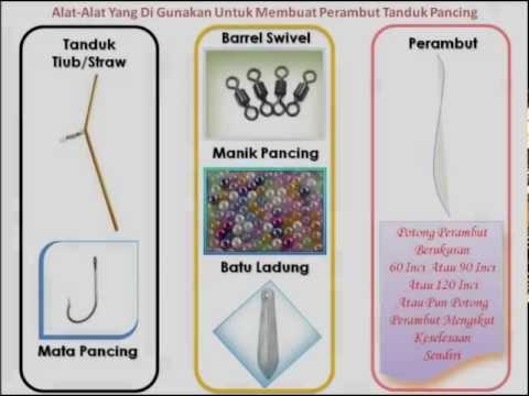 Perambut - Semoga tips membuat perambut tanduk pancing ini dapat membantu, KEGEMBIRAAN BERJORAN KITA KONGSI BERSAMA. http://jadualair.blogspot.com.