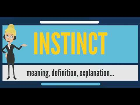 What is INSTINCT? What does INSTINCT mean? INSTINCT meaning, definition & explanation