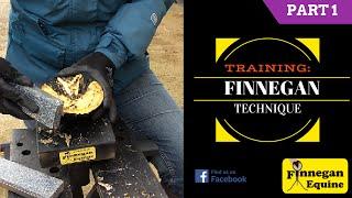 Finnegan Technique Training - Part 1 / 3