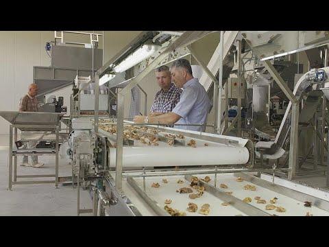 Μολδαβία:Ευρωπαϊκή πρωτοβουλία για τον εκσυγχρονισμό των αγροτικών επιχειρήσεων …