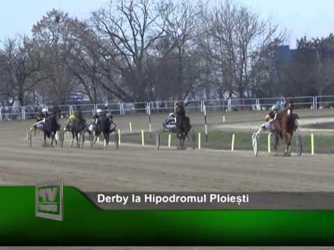 Derby la Hipodromul Ploiești