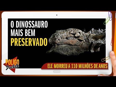 O Dinossauro Mais Bem Conservado do Mundo - Como os Fósseis se Formam?  PoligoPocket