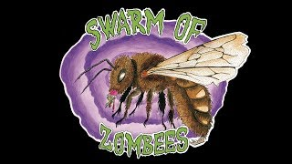 Video MindRape - Swarm of Zombees live 2017 @ Vagon Music Pub & Club [