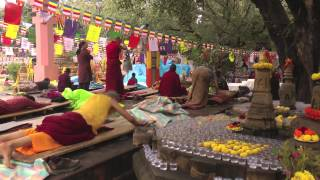 Bodh Gaya India  city photos : On the Path of the Buddha: Buddhist Pilgrimage in North India