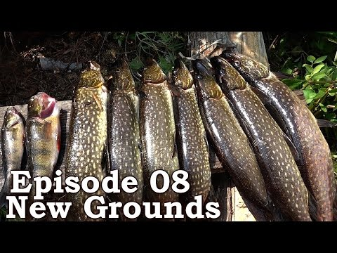 Catch N Cook PIKE | The Wilderness Living Challenge 2016 S01E08 | NEW GROUNDS