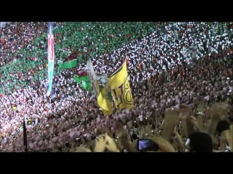Mosaico FLU 1 x 0 GRÊMIO - BR-2015 - O Bravo Ano de 52 - Fluminense