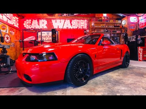 @1BADVERT Barry Hall's 2003 Terminator Cobra