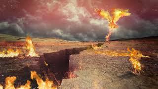 Cobi - Rising Phoenix [Official Audio]