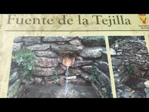 Taller de iniciación a los invertebrados en la Gran Senda de Málaga
