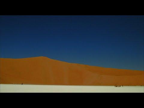 The Fall (2006) - FULL HD VIETSUB