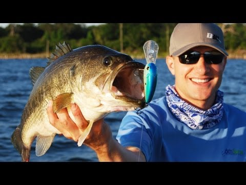 Power Fishing Tips – Buzzbait Crankbait and Spinnerbait Bass Fishing Tips