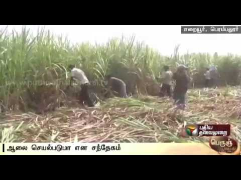Perambalur-farmers-suffer-as-last-years-dues-are-not-cleared-mill-under-renovation