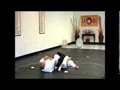 Danzan Ryu Jujitsu/Self Defense