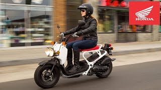 10. 2020 Honda Ruckus Street Scooter