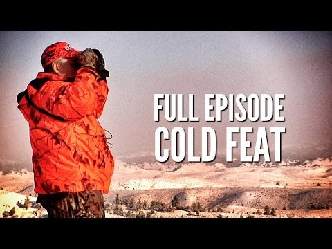 "Montana Mule Deer Hunting – ""Cold Feat"""