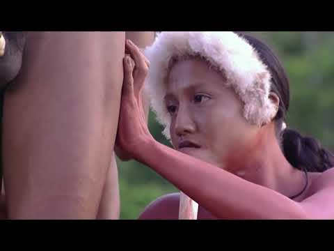 Aboriginal Life Live In The Amazon Forest