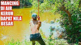 Download Video Coba Lihat!!! Hampir Putus Asa Mancing Tiba-Tiba Dapat Ikan Nila Besar MP3 3GP MP4
