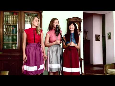 Seven Nation Army - Amazing cover by La Goassn