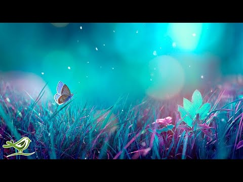 Relaxing Piano Music - Beautif …